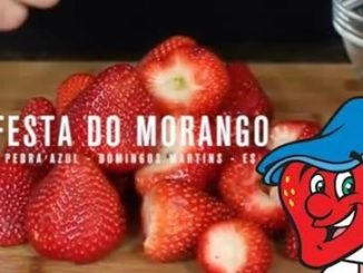 Festa do Morango (foto https://www.borasair.com.br/domingos-martins/festa-do-morango-pedra-azul-domingos-martinses-oficial/)
