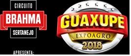 ExpoAgro (foto http://expoagroguaxupe.com.br)