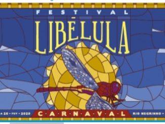 Festival Libélula 2020