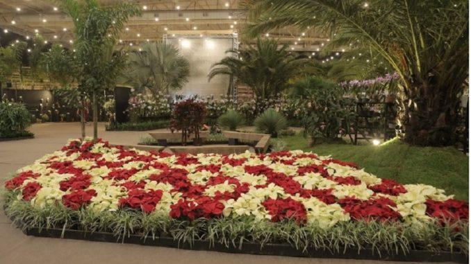 Festa das Flores Joinville 2020