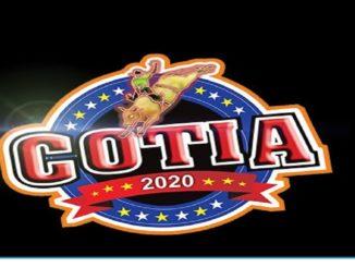 Festa de Cotia 2020