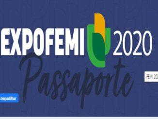 FEMI 2020
