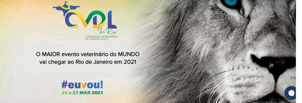 CVDL IN RIO 2021